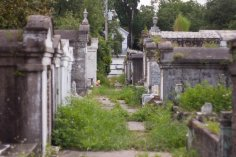 Lafayette Cemetery, NOLA